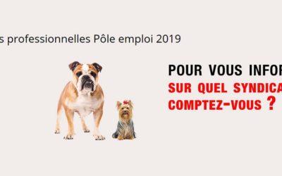Elections professionnelles à Pôle emploi
