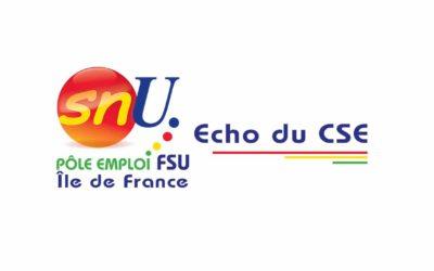 Echo CSE juillet 2020