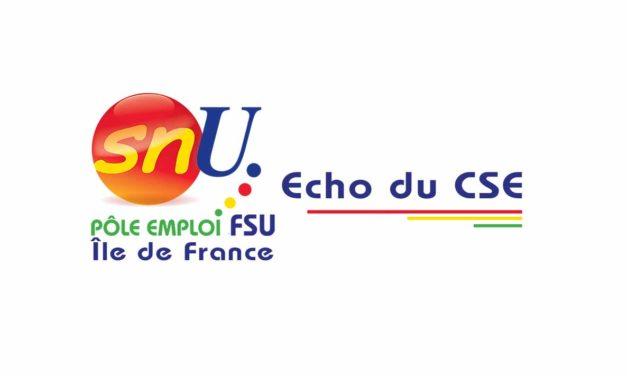 ÉCHO DU CSE · JANVIER 2021